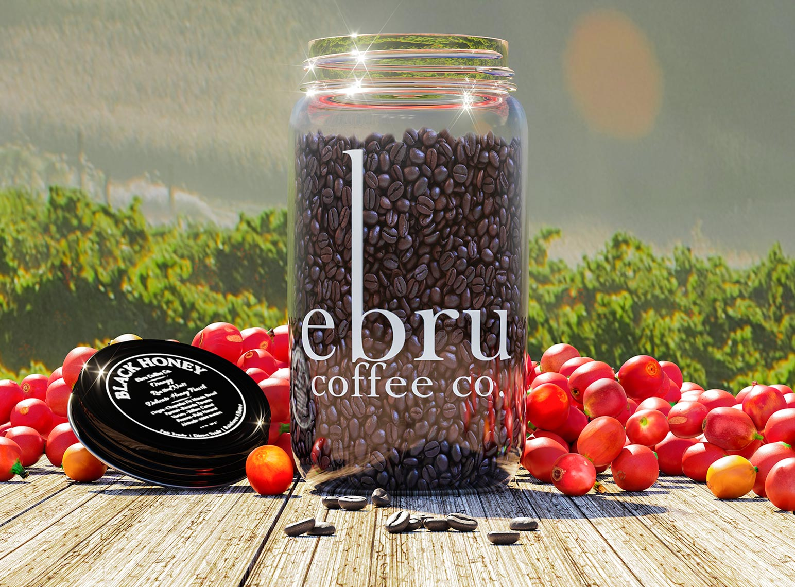 Ebru-Coffee-Field-web